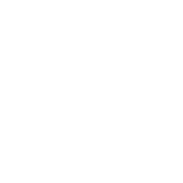 Pin Trader Club logo