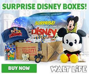 Walt Life - A Monthly Disney Subscription Box